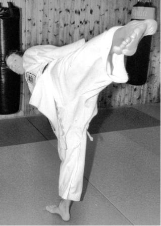 me karate kick